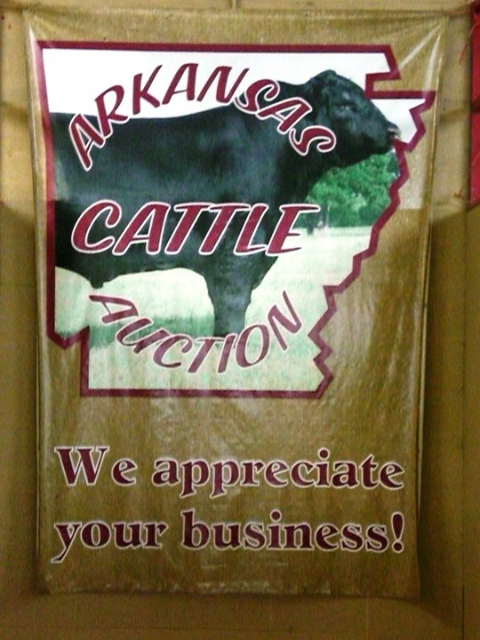 My family's business, Arkansas Cattle Auction