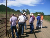 Part of the ACA Young Cattlemen's Group at Winrock