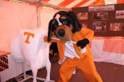 Tennessee Animal Science