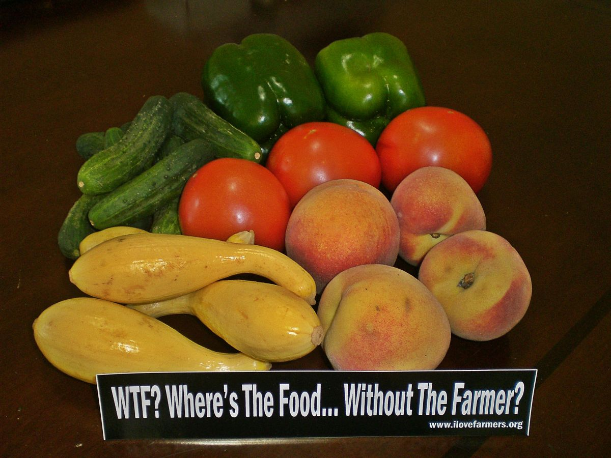 WTF? - Where's the food, without the farmer?