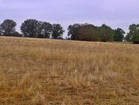 arkansas drought dry pasture 2