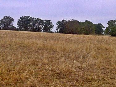 arkansas drought dry pasture 2
