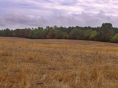 arkansas drought dry pasture
