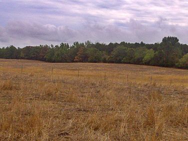 arkansas drought dry pasture