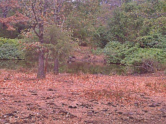 arkansas drought low pond dry