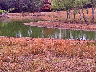 Many ponds are getting dangerously low. This could cause concern for debris and unclean water for livestock