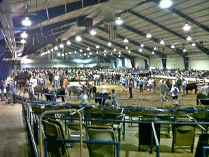 Arena after things fired up on show day