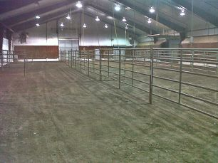 Cattle stalls before bedding was laid down