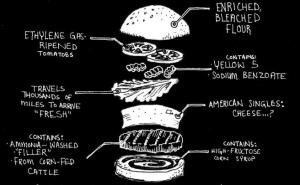 food policy hamburger