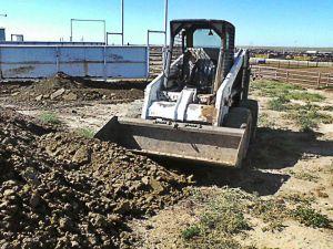 Texas cattle feedlot manure environment CAFO