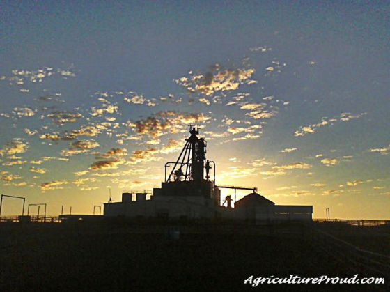feed mill sunrise