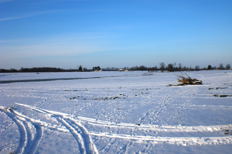 Arkansas Delta Snow