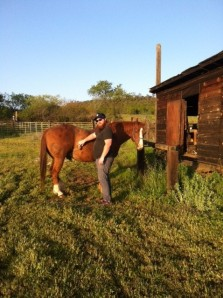 Learning horses aren't like in the movies. They require a lot of work!