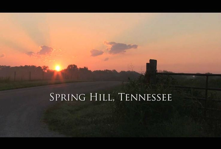 Angus - Spring Hill TN