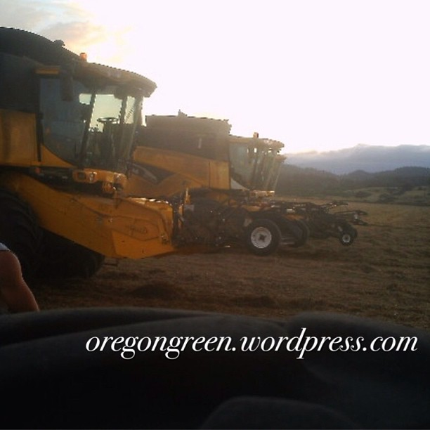marie bowers grass seed harvest tractor