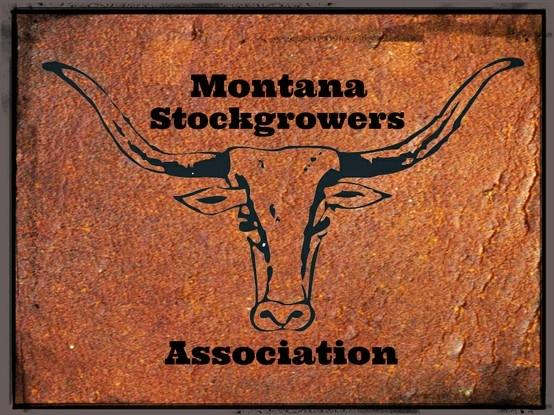 montana stockgrowers