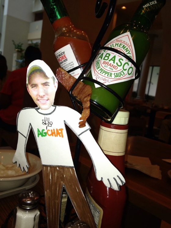 Flat Ryan checks out bacon & Tabasco Sauce