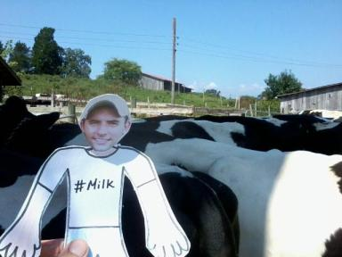 Flat Ryan learns about antibiotics in milk
