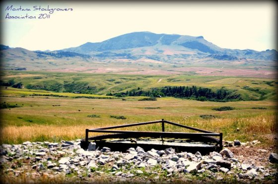 Ranchers utilize several innovative management techniques, like improving water sources, to conserve and improve our beautiful rangeland environments like this scene near Havre, Montana.. Photo Credit: Montana Stockgrowers Association