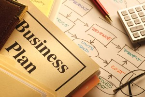 Feedlot business plan