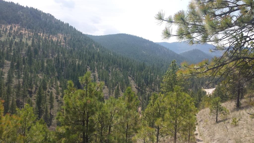 helena montana south hills trails