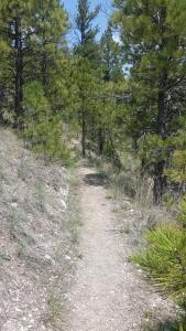 helena montana trail