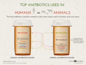 classes of antibiotics use in humans livestock
