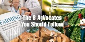 The-6-AgVocates-To-Follow